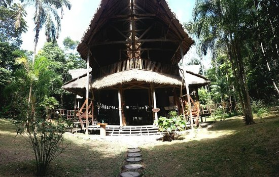 Refugio Amazonas: The front of the main lodge