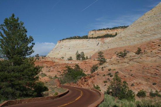 Zion-Mt. Carmel Highway: Scenes from Zion - Mt Carmel Highway