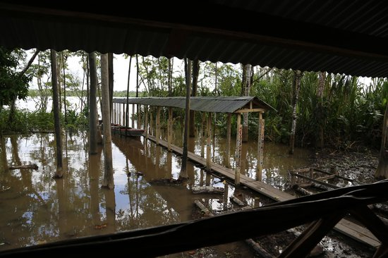 Amazon Explorama Lodges: entrance to children's library-high water