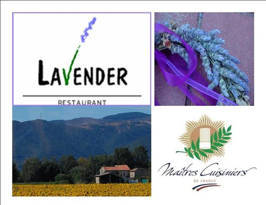 WELCOME TO LAVENDER!