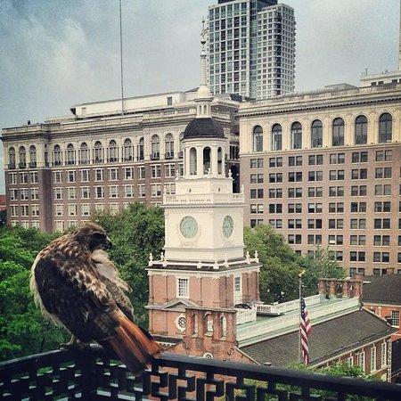 Kimpton Hotel Monaco Philadelphia: vue