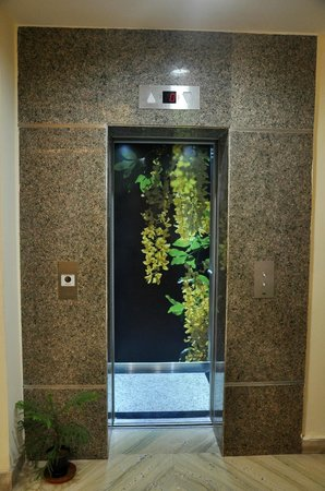 The Executive Suites: Elevator Facility