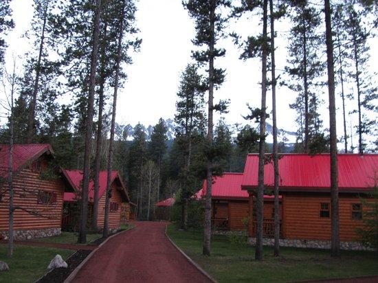 Baker Creek Mountain Resort: Nestled in the mountains