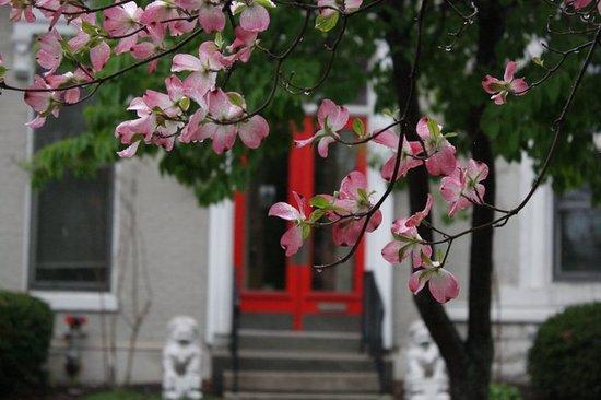 Asia Institute Crane House
