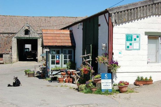 Manor Farm Cafe