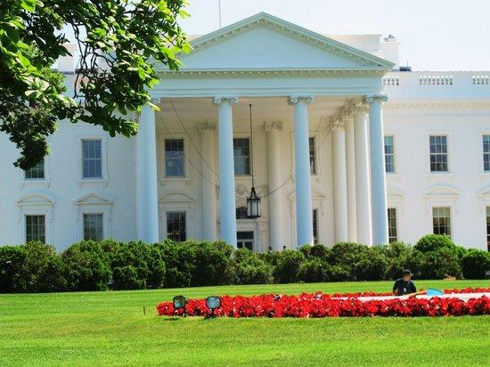 DoubleTree by Hilton - Washington DC - Crystal City: The White House
