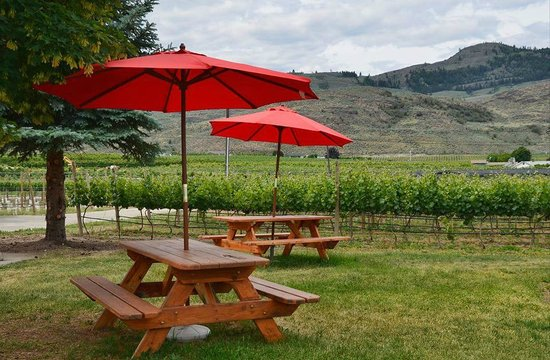 Young & Wyse Collection: Picnic area outside the winery