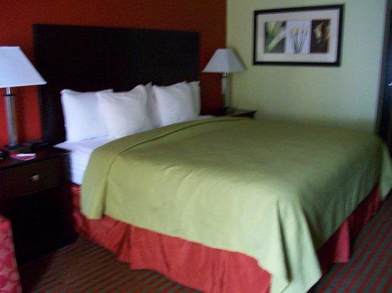 Quality Inn: King bedroom