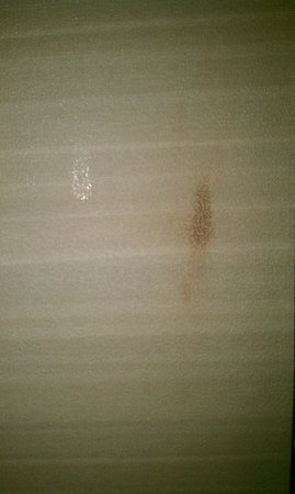 Hyatt Regency Columbus : Is that a blood stain?