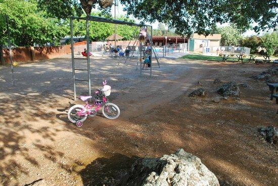 Auburn Gold Country RV Park : Monkey bars for the kids