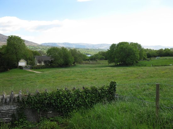 Tara Farm: View from Cottage