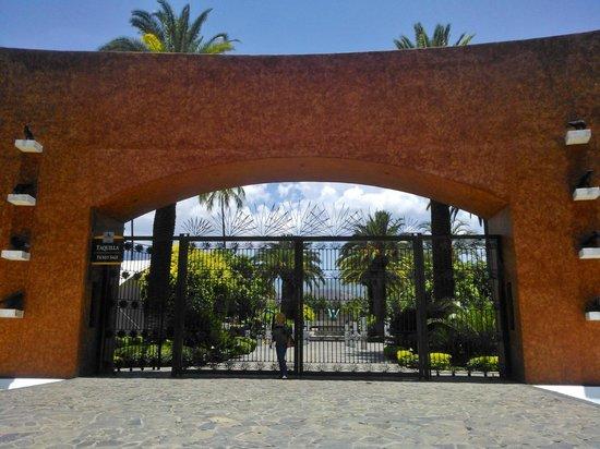 Destilería La Rojena - Jose Cuervo: la mejor foto que he tomado