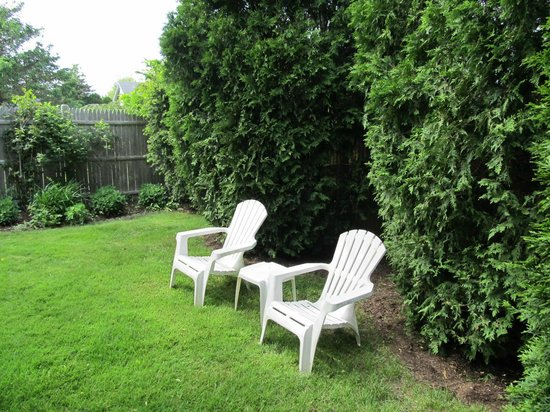 Carriage House Inn : Private yard