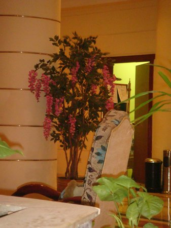 Roma Hotel: холл