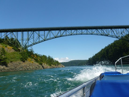 Deception Pass Tours: going under deception pass bridge
