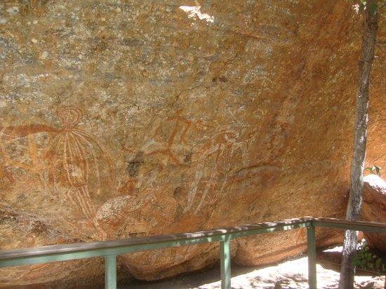 Kakadu Tourism: Termite Mound