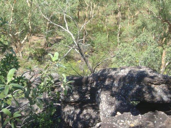 Kakadu Tourism: Gunlom Lower Pool