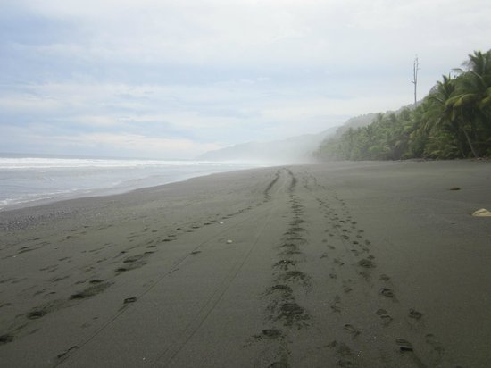 Ojo del Mar: The amazing walk in to Corcovado