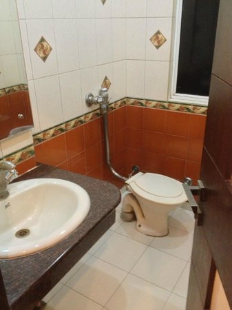 Hotel Chanchal Continental: Simple bathroom/shower combo