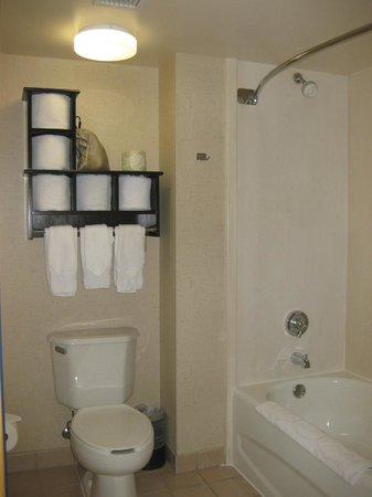 Hampton Inn and Suites Los Angeles - Anaheim - Garden Grove: Bathroom