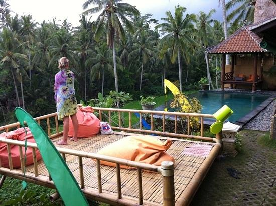 Capung Sakti Villas: gorgeous place...