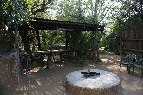 Masodini Private Game Lodge: Cover area