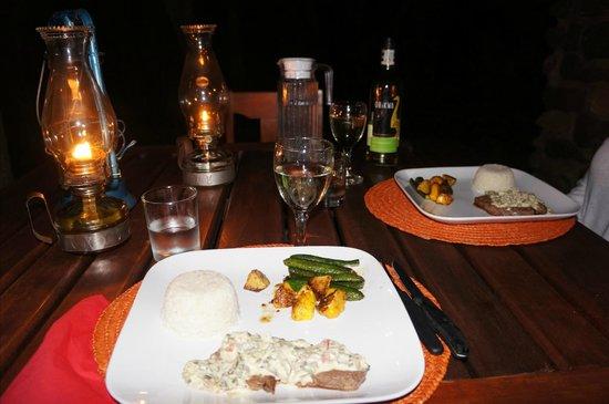 Masodini Private Game Lodge: One course of dinner