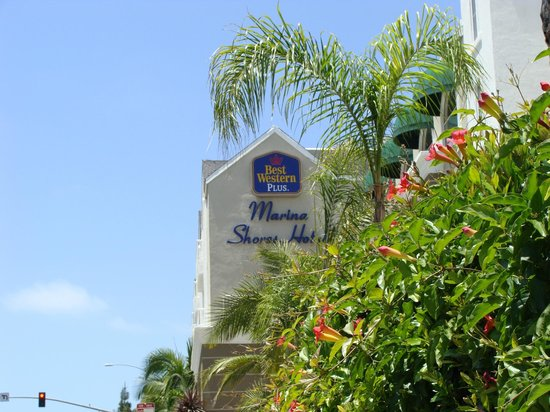 BEST WESTERN PLUS Marina Shores Hotel: Hotel Front
