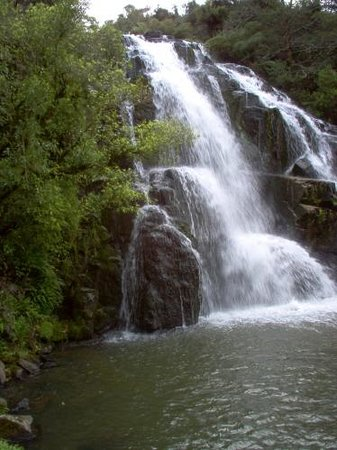 Golden Owl Accommodation: OWHAROA FALLS