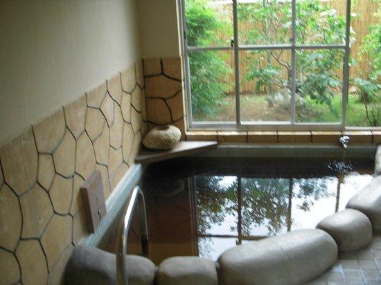 Rinkeiso: 温泉の内湯2