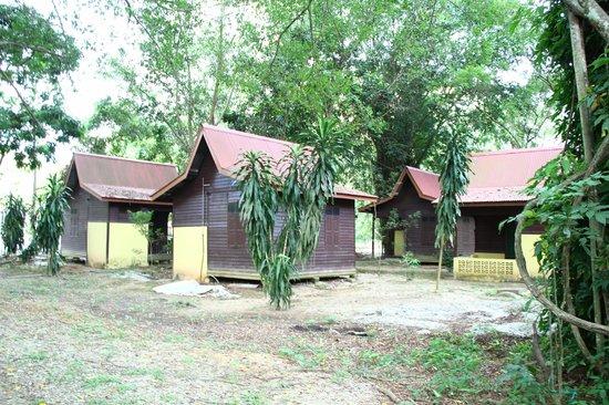 Kuala Selangor Nature Park (Taman Alam Kuala Selangor): Chalets at the entrance of the Park