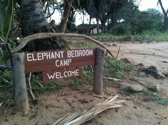 Outside Our Tent Picture Of Elephant Bedroom Camp