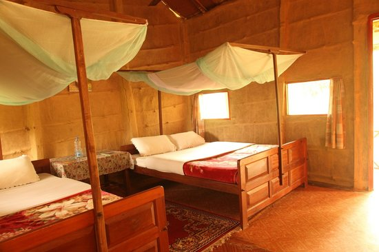 Forest Hideaway Hotel & Cottages: Tharu Standard Room