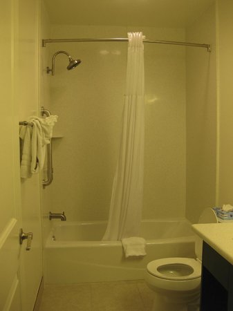 Best Western Plus LA Mid-Town Hotel : Bathroom