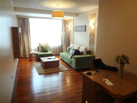 Reata Serviced Apartments: Spacious living room. Very modern