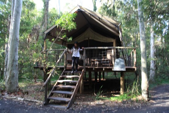 Paperbark Camp : Original Safari Tent