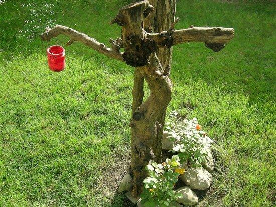 B&B Casa Anita: Uno strano personaggio si aggira nei giardini di Casa Anita. In foto una testimonianza inedita