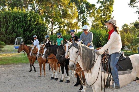 The Horse Resort