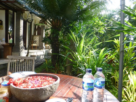 Mulawarman Ubud Bali: Garden and view to cheaper rooms