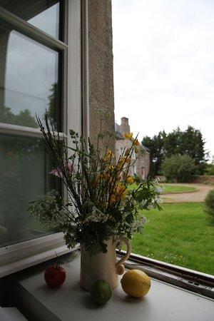 Manoir de La Villeneuve : The view from our room.