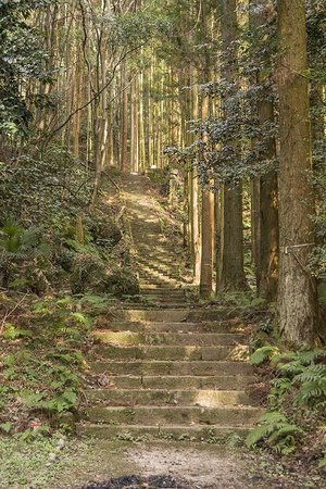 Iwami-Ginzan Silver Mine: stairs up to temple ruins in the forest