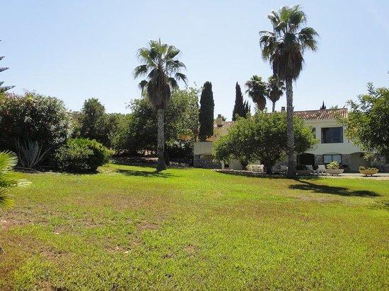 Villas La Manga: Garden