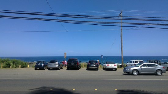Sharks Cove Rentals: View across the road from front of property