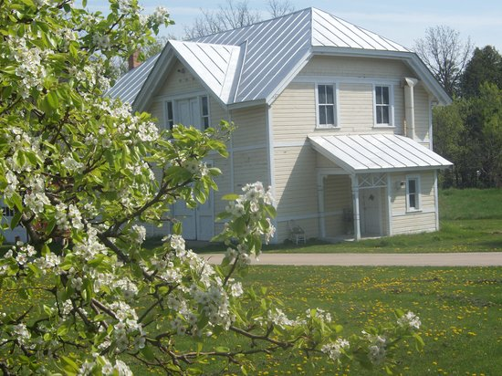 Apple Tree Lane Bed & Breakfast: Pear blossoms & the original coach house