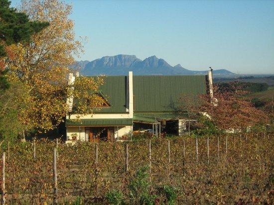 Grangehurst Winery : getlstd_property_photo