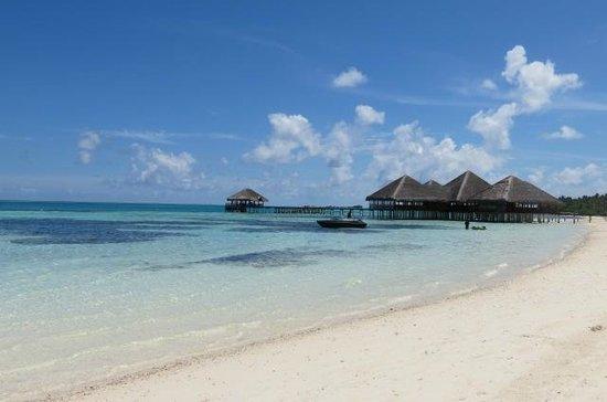 Medhufushi Island Resort: restaurant bar sur pilotis