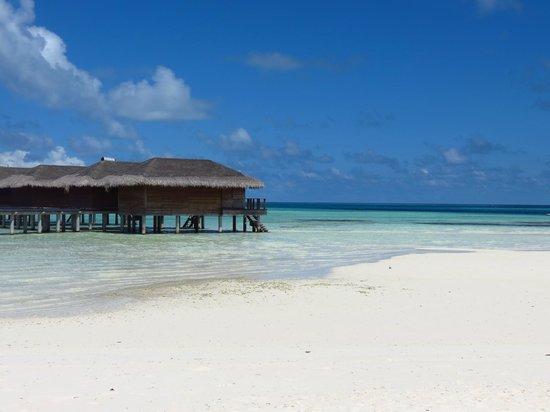 Medhufushi Island Resort: water villa