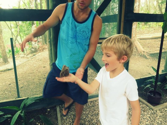 The Lodge at Chaa Creek: Butterfly Garden