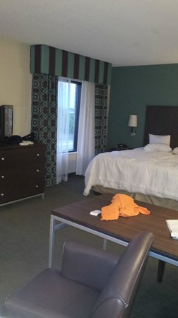 Hampton Inn & Suites by Hilton Halifax - Dartmouth: king bed suite 7
