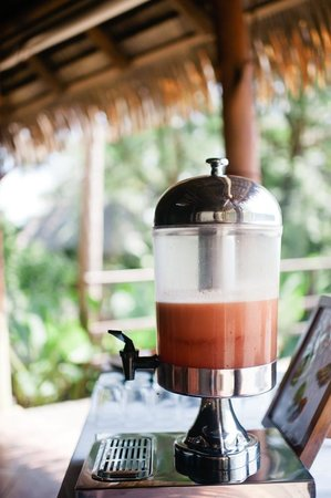 Lapa Rios : Delicious tropical smoothies offered at Brisa Azul